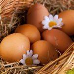 Диабетикам полезны яйца