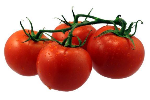Помидор – гигантская ягода