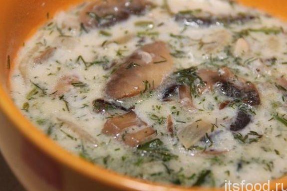 Грибной бархатный суп