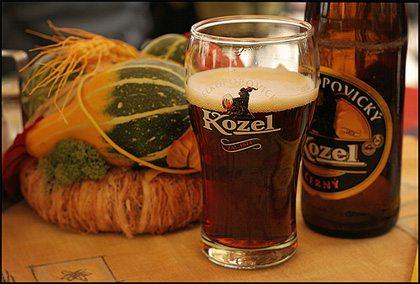 Учимся правильно пить пиво