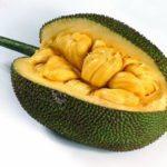 Что такое джекфрут?
