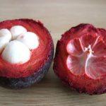 Что такое мангустин?