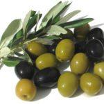 Что такое оливки?