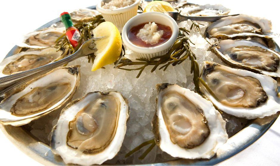 Где можно недорого поесть морепродукты в торревьехе
