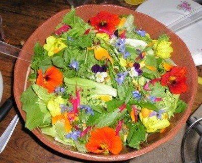 Салат с яйцом и свежим огурцом из листьев настурции