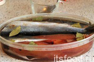 Заливаем селедку с икрой полученным рассолом-тузлуком. Если рассол не покрывает рыбу, необходимо добавить простой кипяченой воды. Закрываем баку герметичной крышкой, немного потрясем ее и убираем в холодильник на 2-3 дня.
