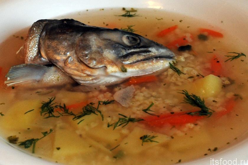 Суп рыбный из горбуши рецепт пошагово