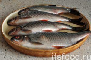 Сейчас мы узнаем как пожарить рыбу на сковороде. На приготовление нам потребуется 50 минут: Первым делом нужно выполнить самую тяжелую и неприятную работу – почистить нашу плотву. Это можно сделать в небольшом тазике с теплой водой, который помещается в кухонную мойку. Погружаем одну рыбку на дно таза и, придерживая ее, чистим чешую от хвоста к голове. Вся чешуя остается в тазике, и не прилипает к кухонному потолку.