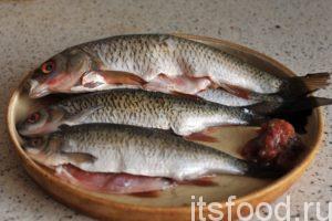 Почищенную рыбу нужно выпотрошить и удалить жабры. Из потрохов карповых рыб имеет ценность одна икра, которую можно обвалять в соленой муке и поджарить. Тщательно промываем потрошеную плотву изнутри и снаружи.
