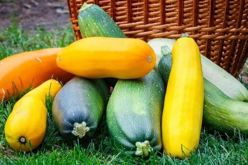 7 продуктов для подготовки организма к осенней поре