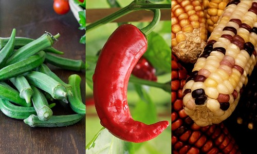 Почему овощную смесь именуют «мексиканской»