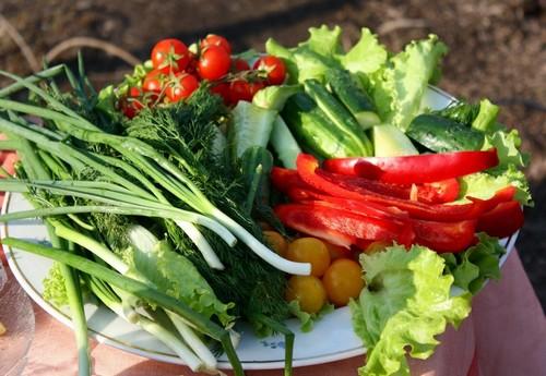 4 летних салата со свежим луком и укропом