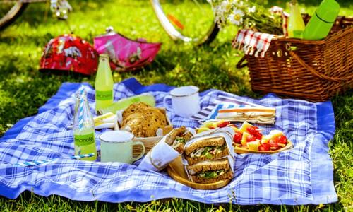 5 удобных блюд для идеального пикника на природе