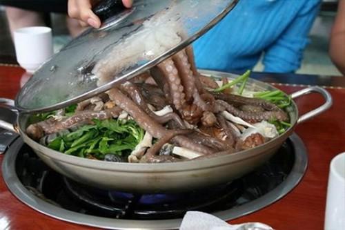 Живой осьминог, куриные лапки и 6 других странноватых блюд Кореи